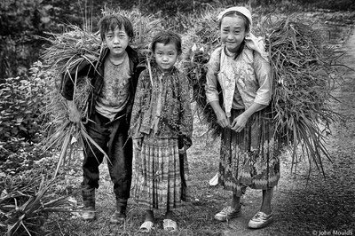 face of vietnam - Grasscutters of Ha Giang Siblings on the Ma Li Peng Pass, Ha Giang Published on the Front Page of 1x.com