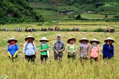 face of vietnam - Sin Suoi Ho