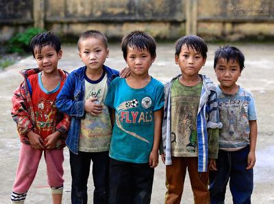 face of vietnam - Tong Qua Lin School
