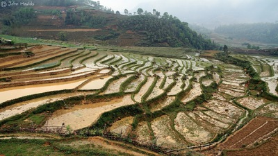 face of vietnam - Sapa