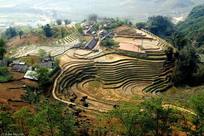 face of vietnam - Ricefields in Giang Ta Chai Village, Sapa