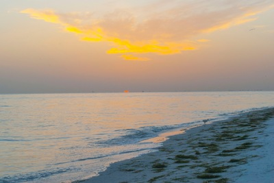 The Other Side of Perfect - Digital Photograph, June/July 2015, Anna Maria Island, Florida