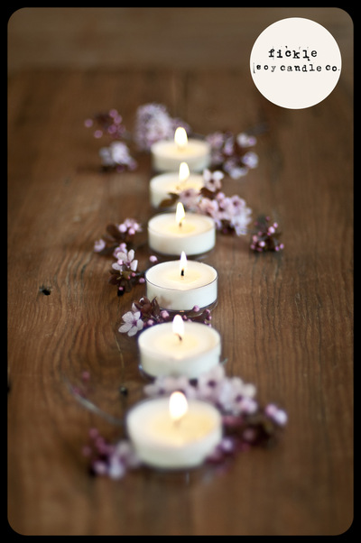 ficklesoycandleco -