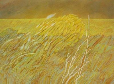 annparry art - canola