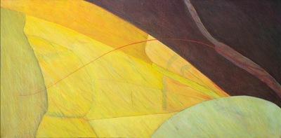 annparry art - wingscape